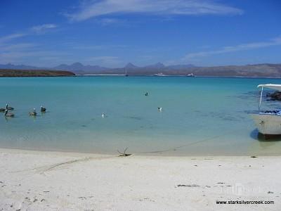 Loreto Coronado Island Trip-13
