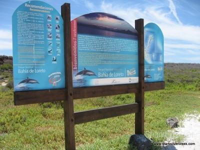 Loreto Coronado Island Trip-16