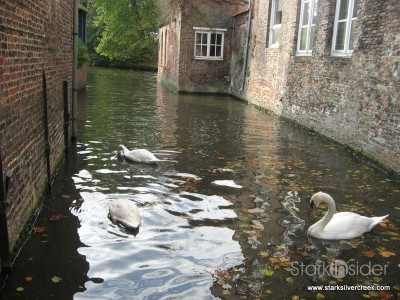 a-day-in-belgium-ghent-bruges-105