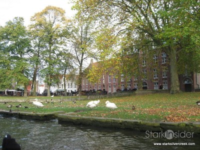 a-day-in-belgium-ghent-bruges-117