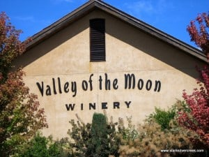 A Sonoma winery definitely worth a visit