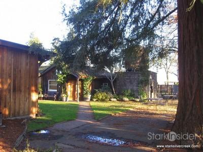 sequoia-grove-winery-napa-4
