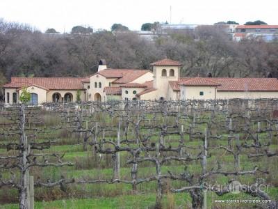 tenuta-vineyards-livermore-2010