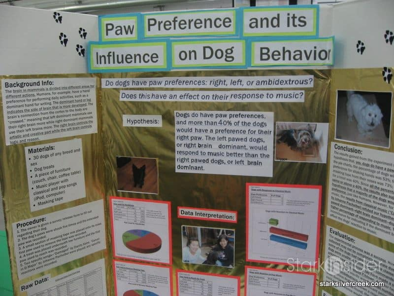 science project posters