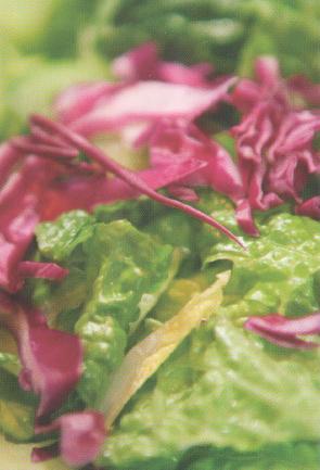 choice-menu-salad