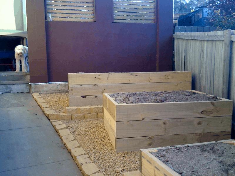Vegetable Planter Box Update From David B In Australia Stark Insider