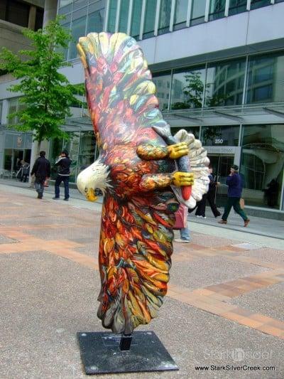 eagles-vancouver-british-columbia-canada