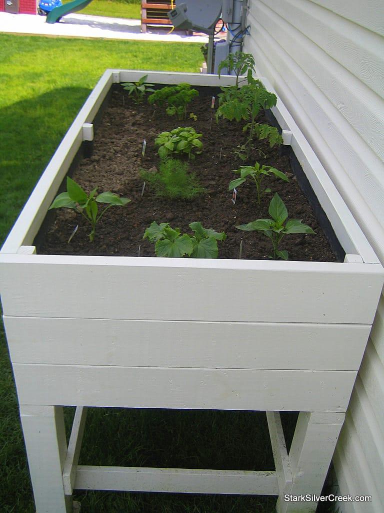 planter-box-monica-1