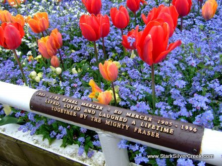 Striking flower beds dedicated to residents