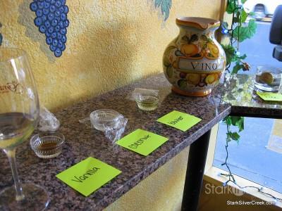 grape-vine-willow-glen-7