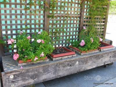 wente-vineyards-planter-boxes
