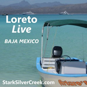 Loreto Live Podcast Logo