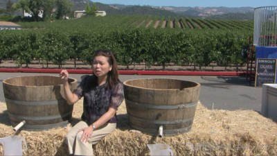 Video thumbnail for vimeo video Crush in Sonoma - a wine country harvest celebration (video)