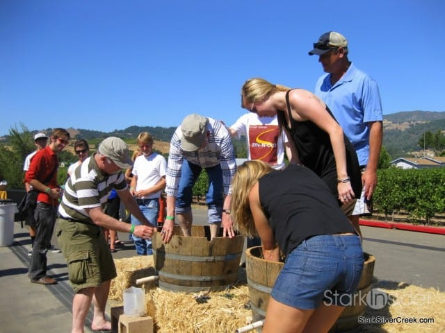 Crush in Sonoma - time for a wine country harvest celebration!