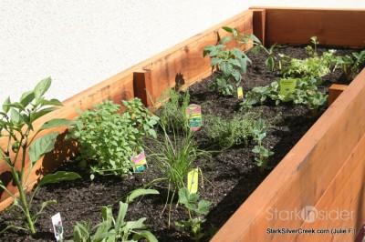 vegetable-planter-box-julie-f-6