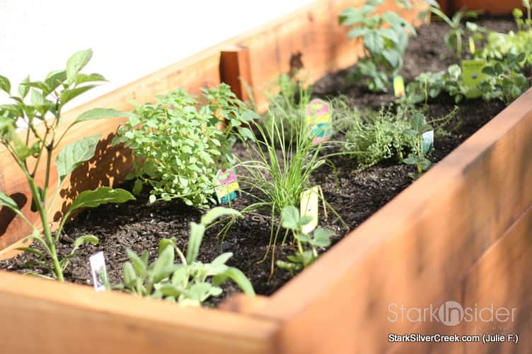 Vegetable Planter Box Turned Herb Garden: Julie Writes In With Photos