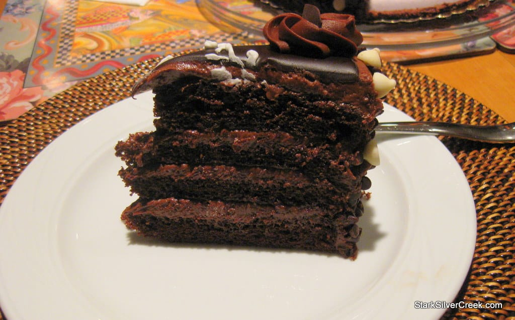 Loni-Birthday-2009-Cake-Card-1