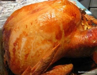 christmas-turkey-life-of-3-thumb
