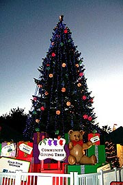giving-tree_good_sm