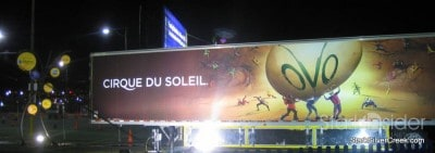ovo-cirque-du-soleil-evening-2