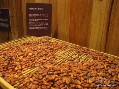 panny-chocolate-factory-phillip-island-australia-7