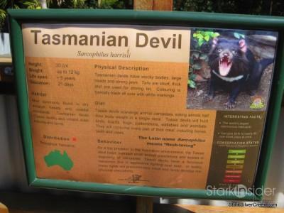 lone-pine-koala-sanctuary-australia-brisbane-16