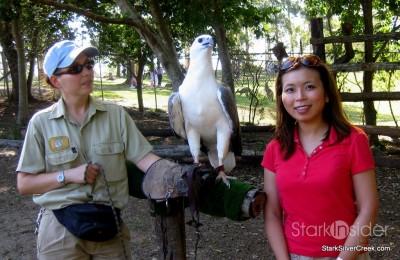 lone-pine-koala-sanctuary-australia-brisbane-26