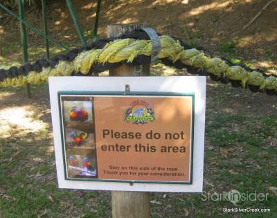 lone-pine-koala-sanctuary-australia-brisbane-28