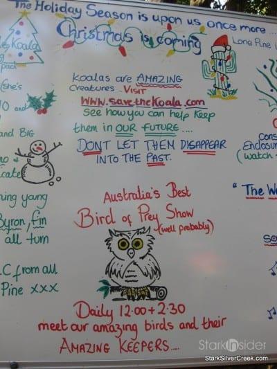 lone-pine-koala-sanctuary-australia-brisbane-37