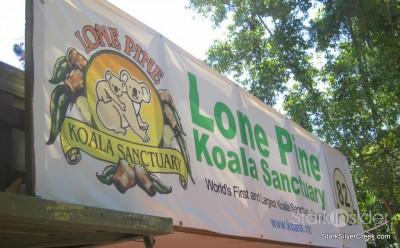 lone-pine-koala-sanctuary-australia-brisbane