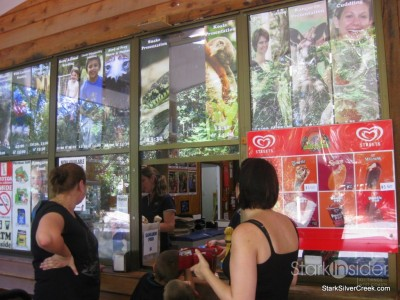 lone-pine-koala-sanctuary-australia-brisbane-43