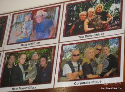 lone-pine-koala-sanctuary-australia-brisbane-45