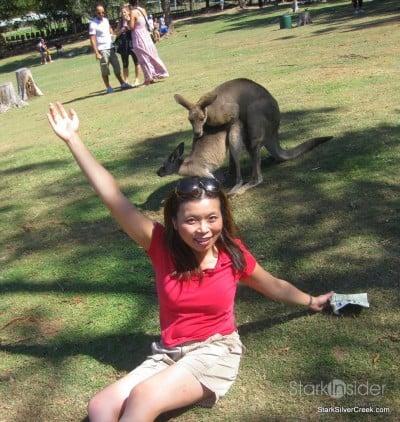 lone-pine-koala-sanctuary-australia-brisbane-8