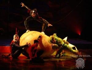 Cirque du Soleil OVO Cast