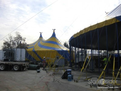 raising-big-top-cirque-du-soleil-ovo-21
