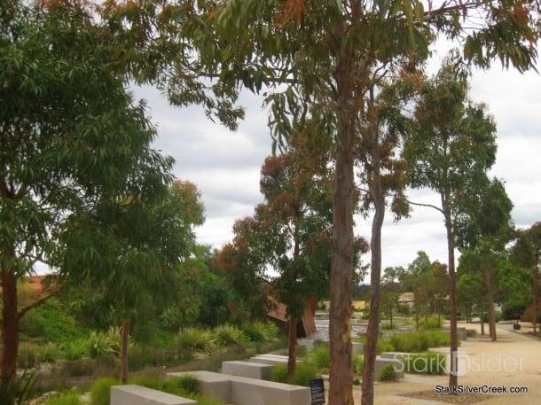 australian-botanical-gardens-11