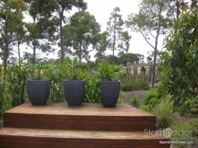 australian-botanical-gardens-21