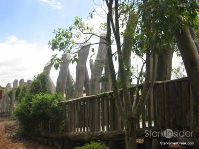 australian-botanical-gardens-26