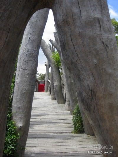 australian-botanical-gardens-29