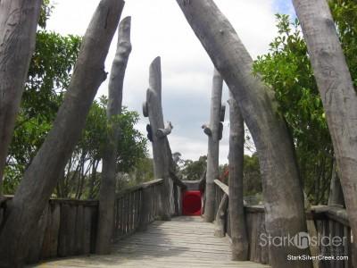 australian-botanical-gardens-30