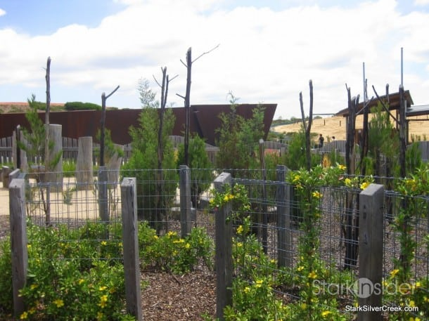 australian-botanical-gardens-33