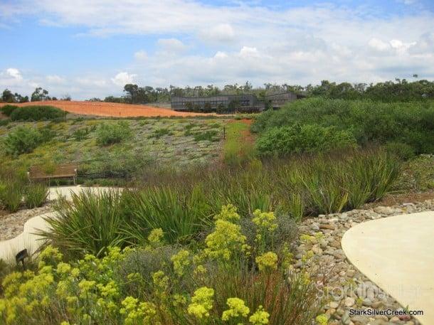 australian-botanical-gardens-44