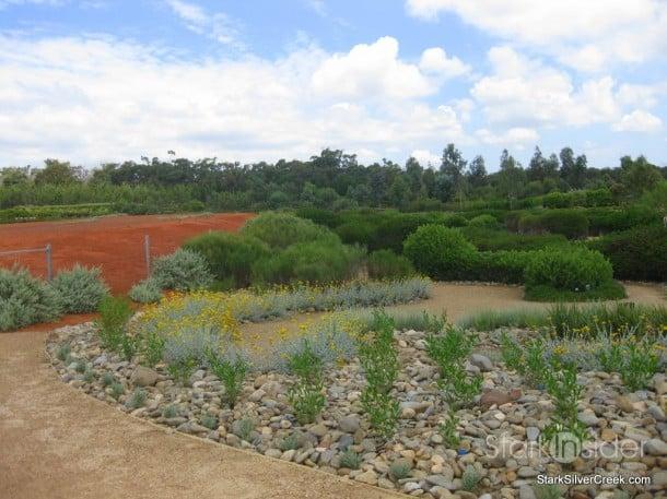 australian-botanical-gardens-46