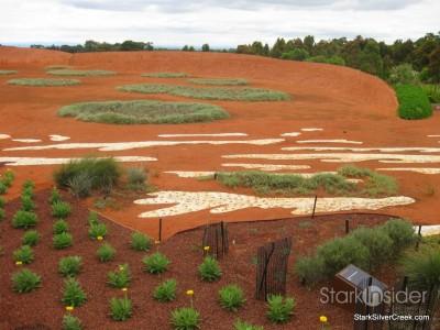 australian-botanical-gardens-6