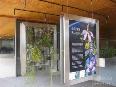 australian-botanical-gardens-62
