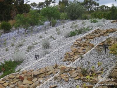 australian-botanical-gardens-8