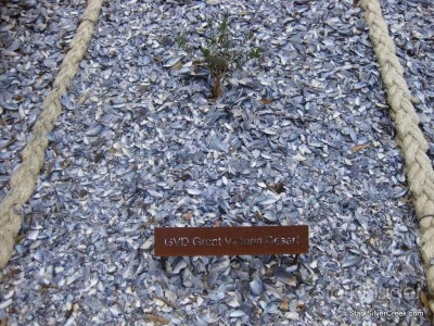 australian-botanical-gardens-9