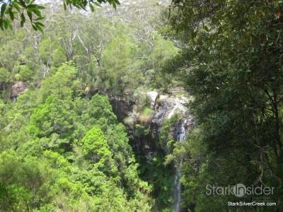 spring-brook-national-park-australia-15