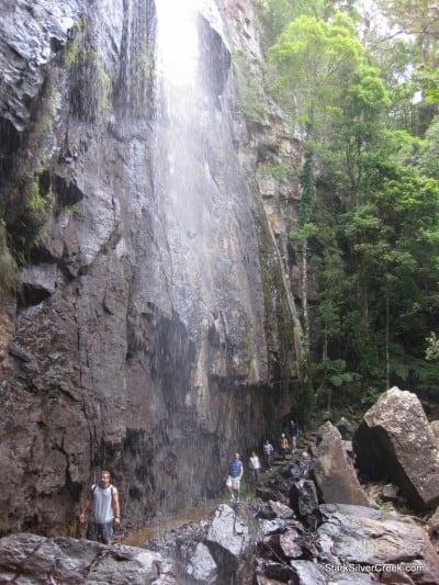 spring-brook-national-park-australia-21
