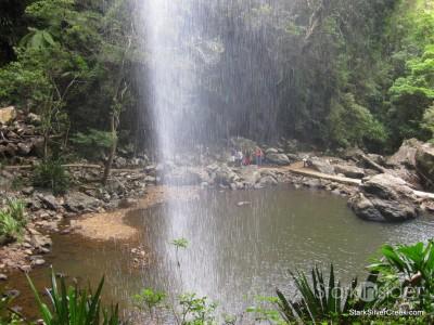 spring-brook-national-park-australia-25